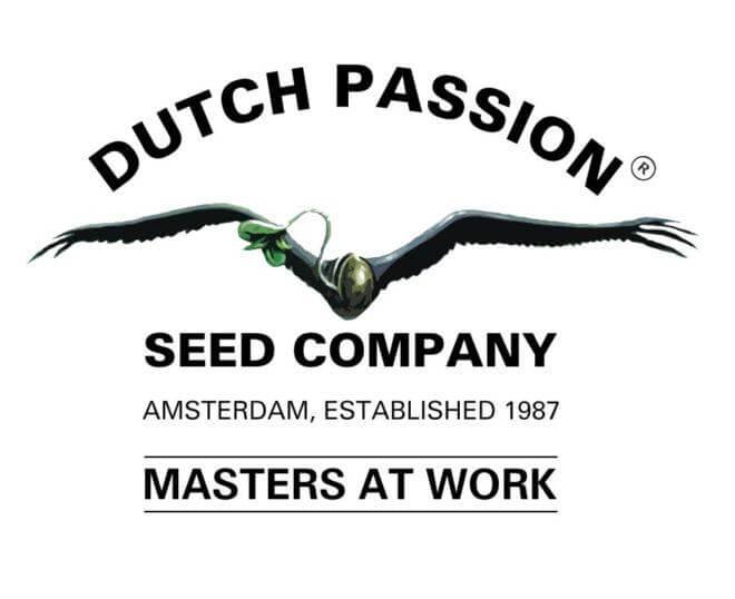 30 años de Dutch Passion