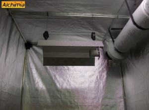 4. Your grow light is ready