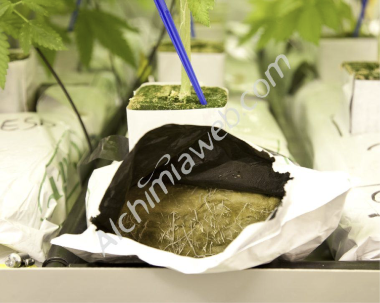 Products to enhance microbial soil life