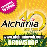Alchimia Grow Shop: Hoy 28 de abril de 2011 cumplimos 10 años