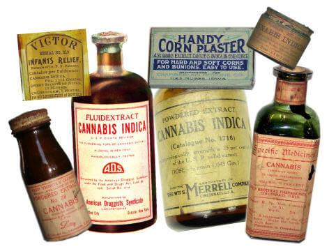 La Marihuana Medicinal Blog Del Grow Shop Alchimia