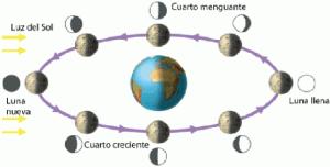 Ciclo De Fases Lunares