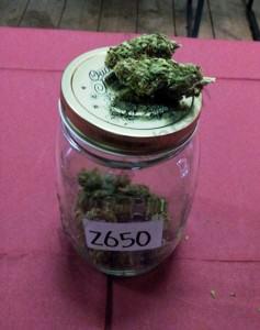 Marihuana Exterior
