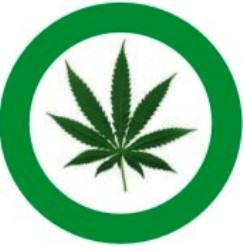 Legalizar marihuana