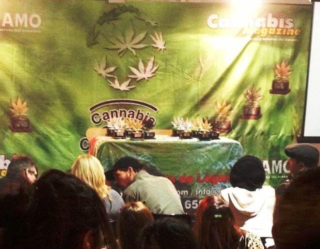Premios Cannabis Champions Cup 2013