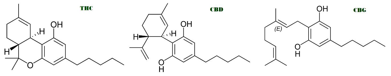 Phyto-cannabinoïdes