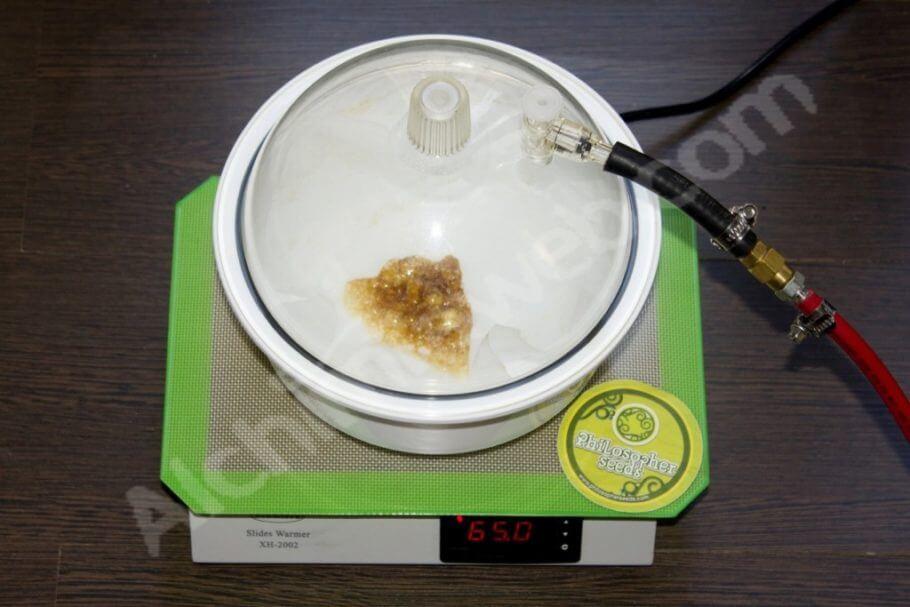 Aceite de marihuana BHO durante el purgado al vacio