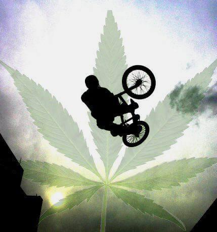 Deporte y marihuana
