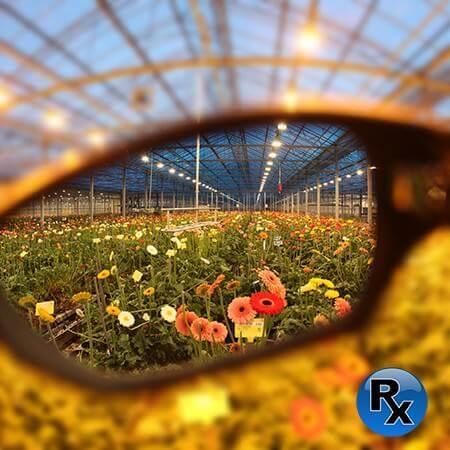 Visión gafas Method Seven