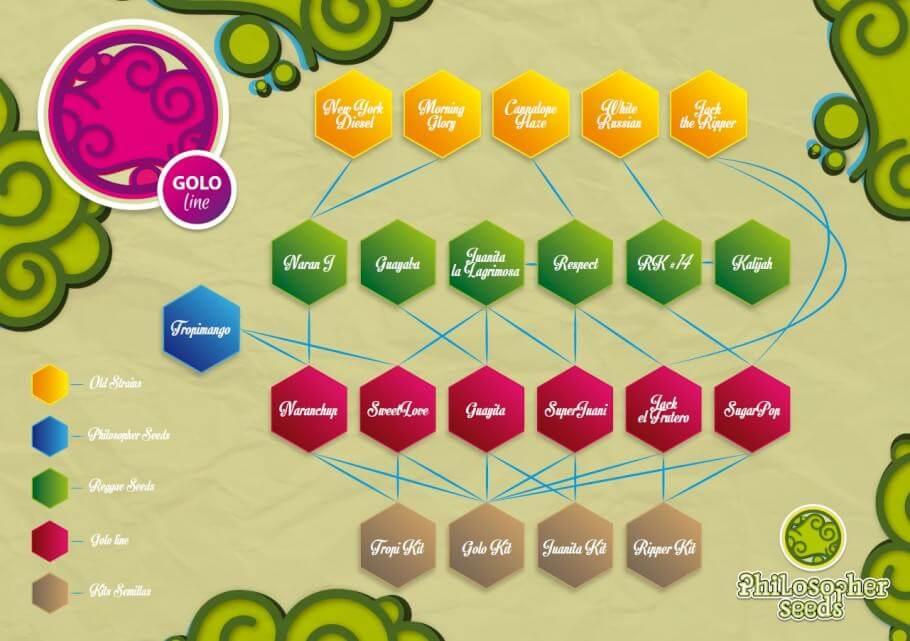 Golo Line genetics