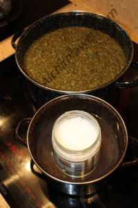 Hidratación de la marihuana y licuefacción del aceite de coco