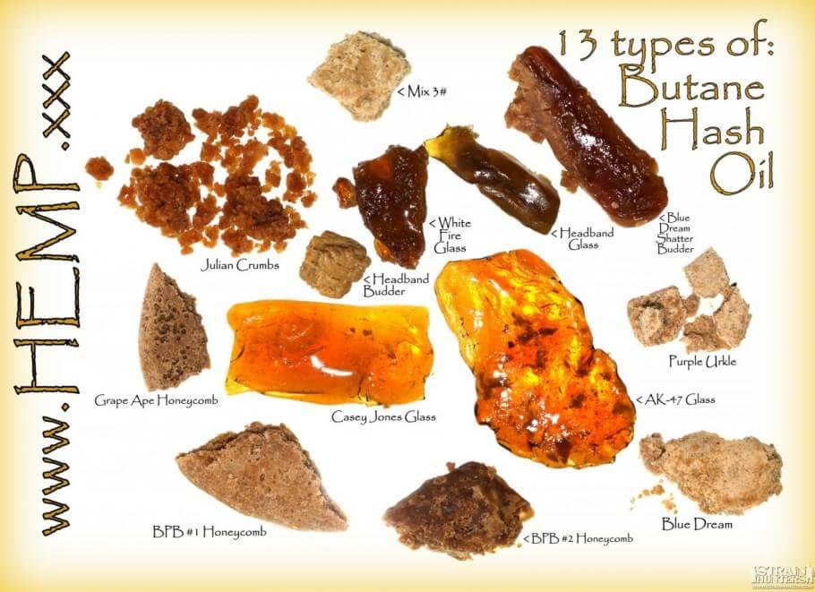 Variaciones de BHO según variedad