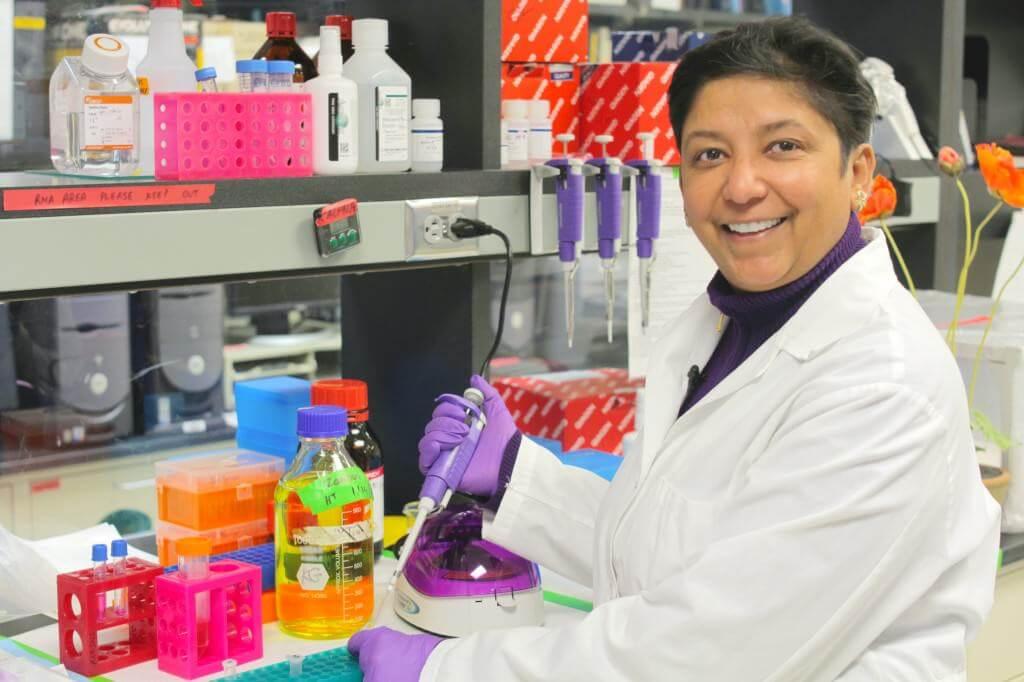 El Dr Kalpna Gupta dirige estudios sobre la marihuana y la drepanocitosis