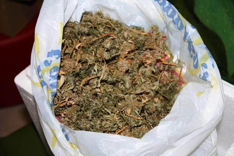Cannabis congelado con hielo seco