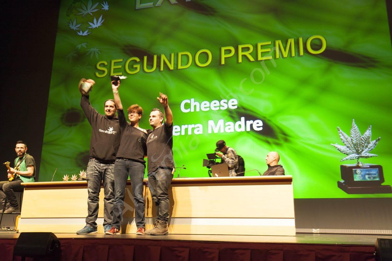 Los premios en la Cannabis Champions Cup 2016