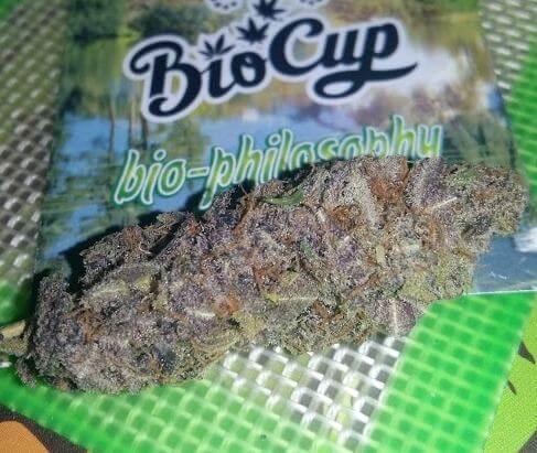 Una muestra de Purple de gran calidad
