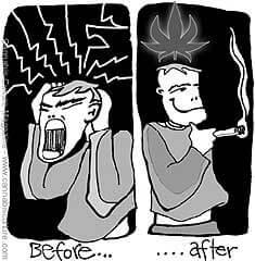 cannabis vs enxaquecas