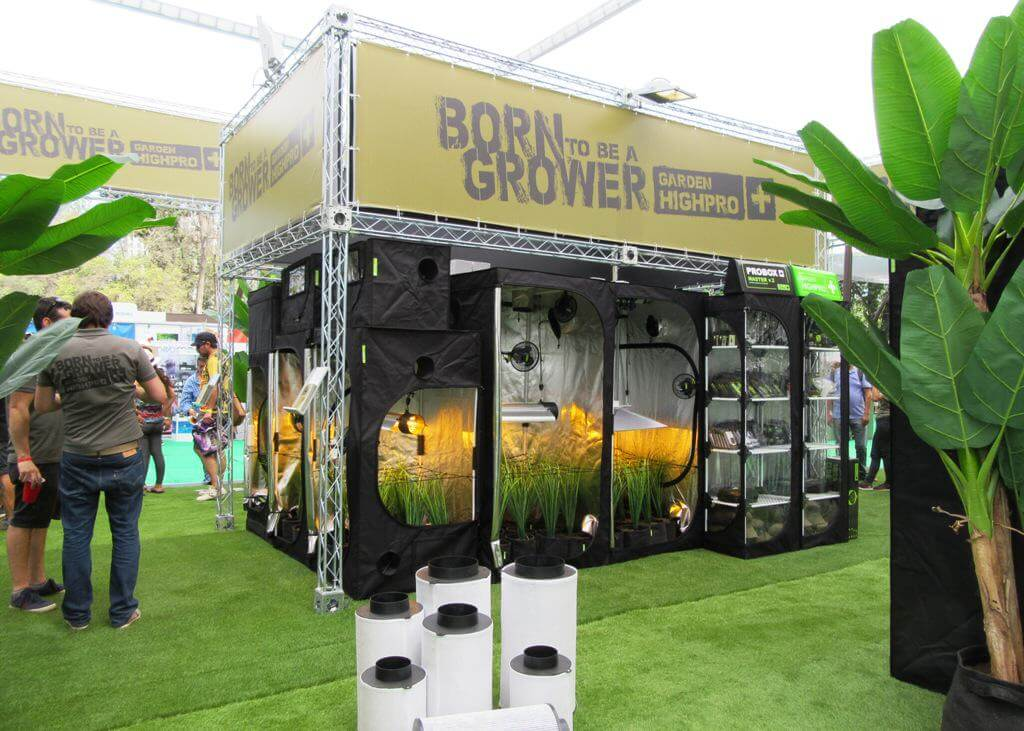 Mejor Stand Expoweed 2016