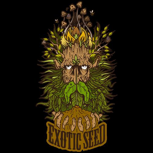 Presentación de Exotic Seed en Alchimiaweb