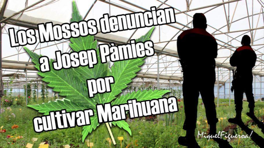 Josep Pàmies denunciado por cultivar marihuana