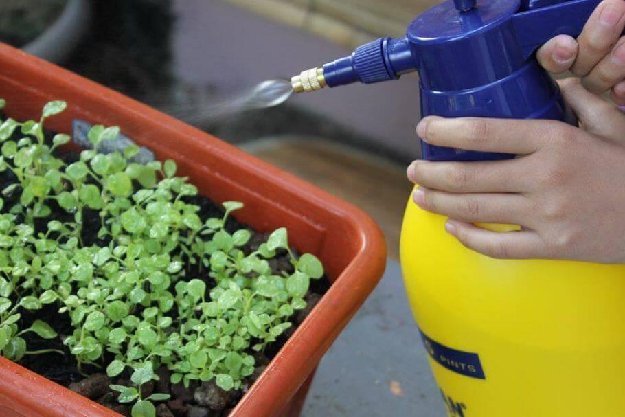 A veces se pulveriza sólo una pequeña parte antes de hacerlo en todo el jardín