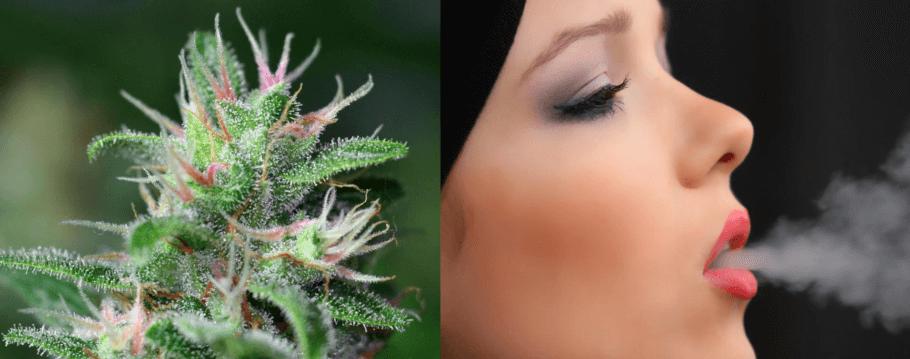 La marihuana puede ayudar en el día a día durante el periodo