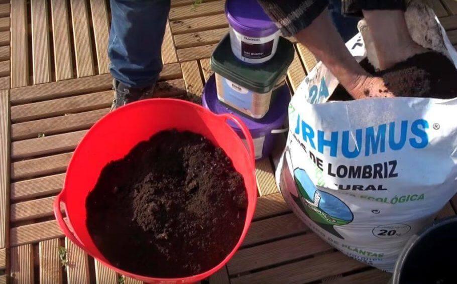 El humus de lombriz es un elemento imprescindible en un sustrato de cultivo