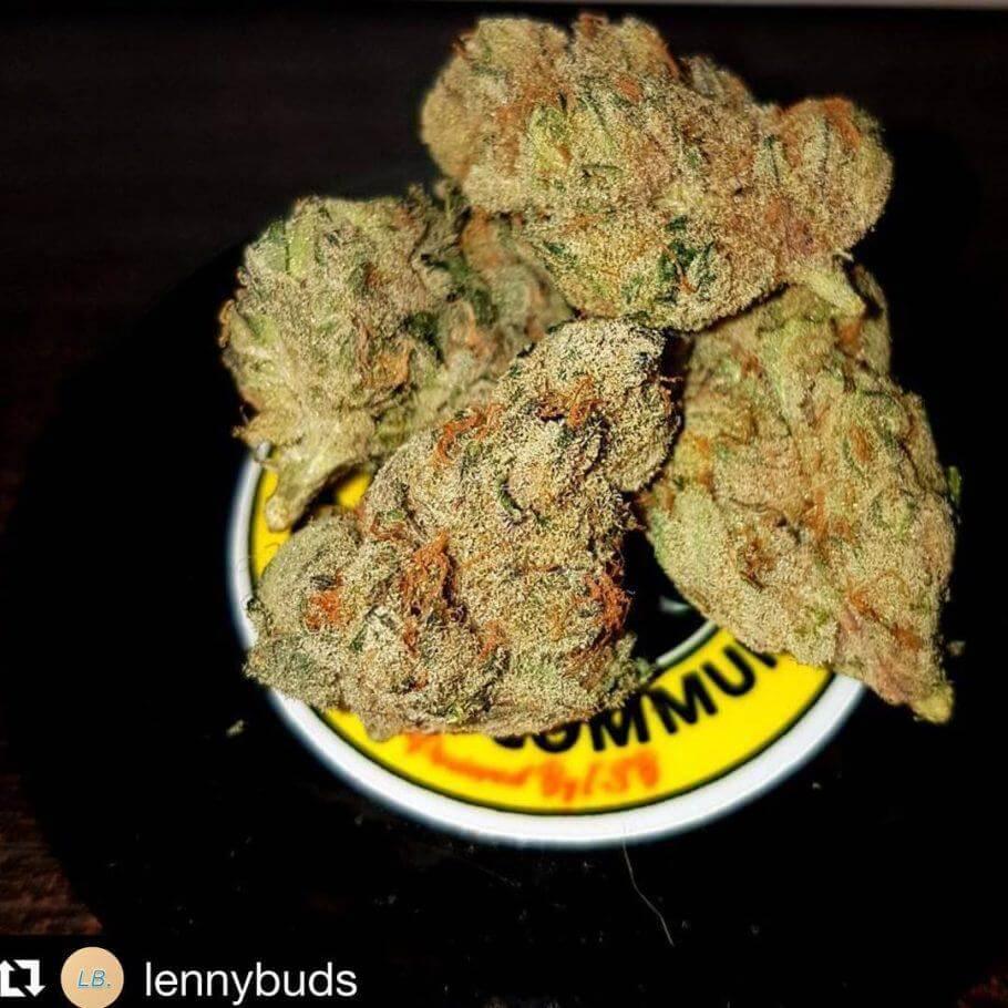Marihuana Cherry Heads