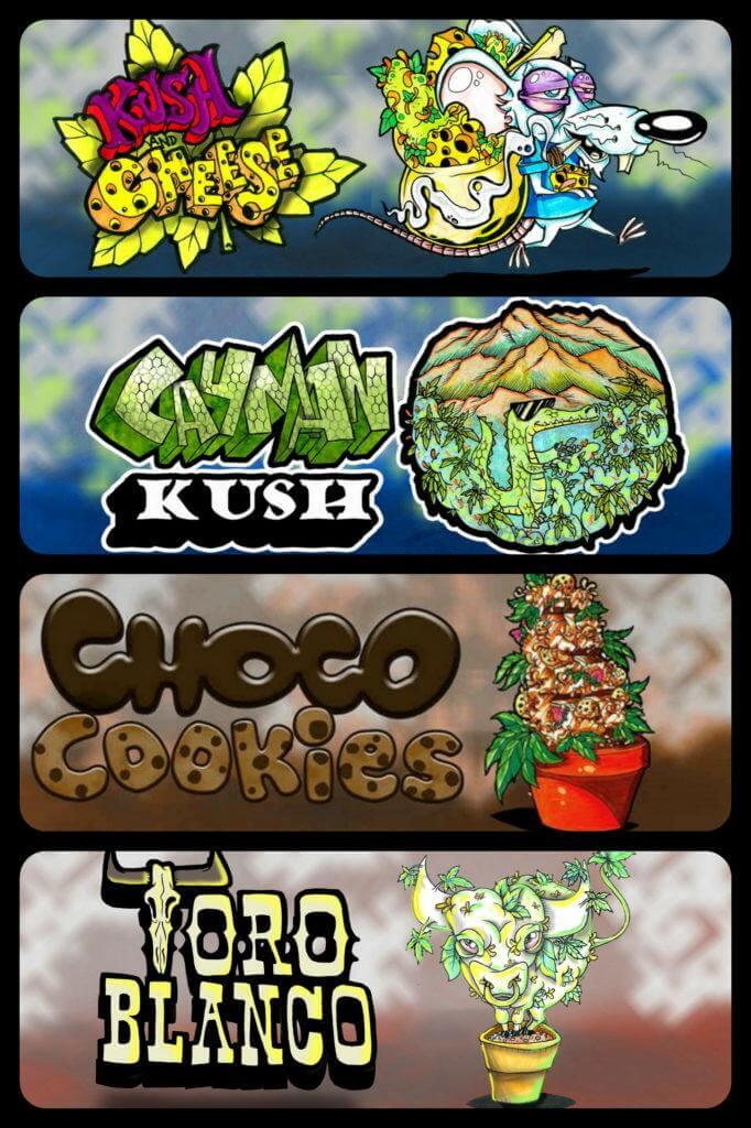 Algunos de los originales logos de Paisa Grow Seeds que distinguen a sus variedades de marihuana