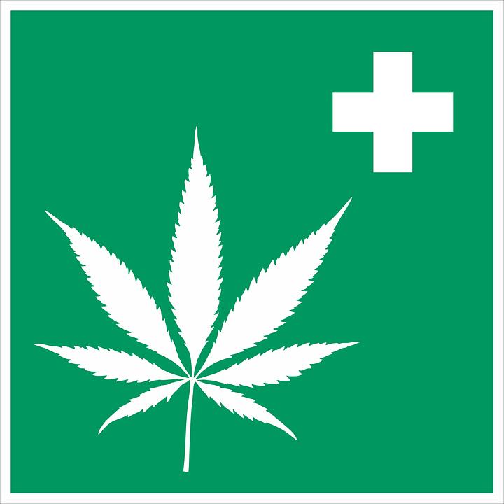 El uso del cannabis en parafarmacia y cosmética aumenta día a día