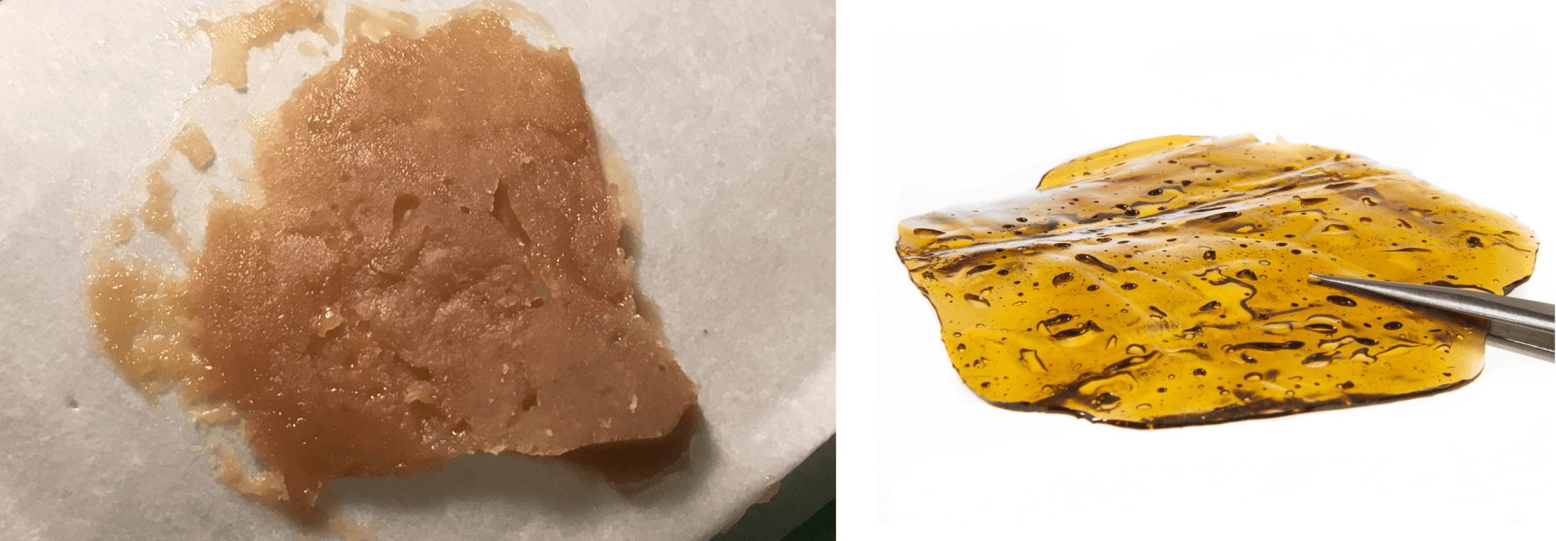 Rosin vs. BHO...¿qué concentrado de resina es mejor?