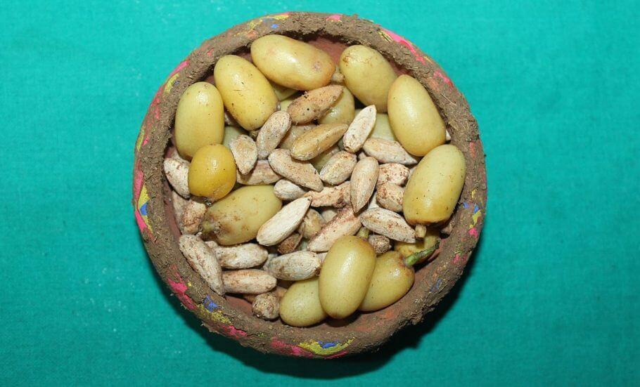Frutos y semillas del árbol del Neem
