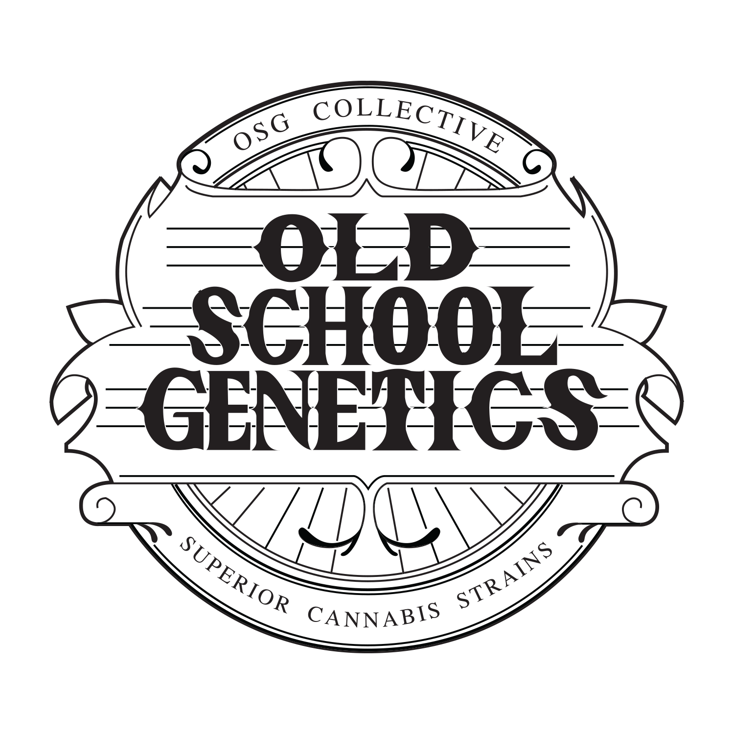 Old School Genetics ya disponible en Alchimia