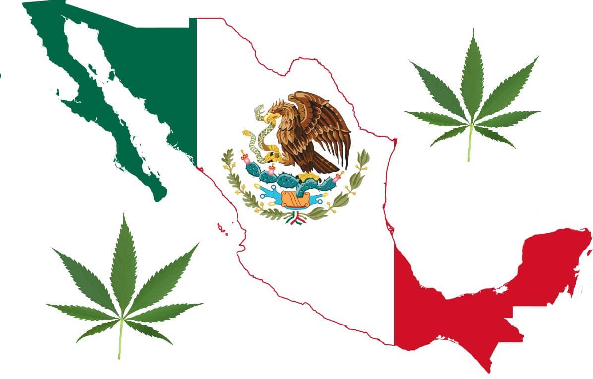 México y marihuana