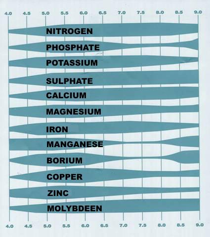 Taula de Ph segons nutrients
