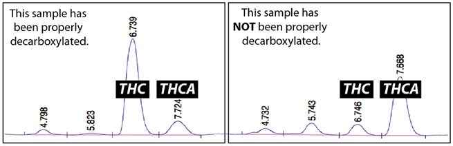 decarboxylation-comparison