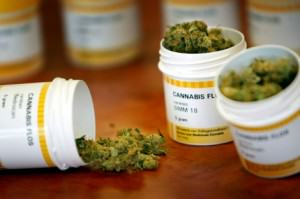 Marihuana terapèutica distribuïda en farmàcies holandeses