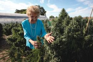 Mary Anne, 98 anys, cultiva cànnabis per millorar la seva glaucoma