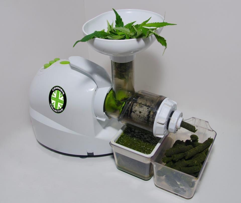 Una liquadora de fruites ens permet extreure ràpidament suc de marihuana de les seves fulles