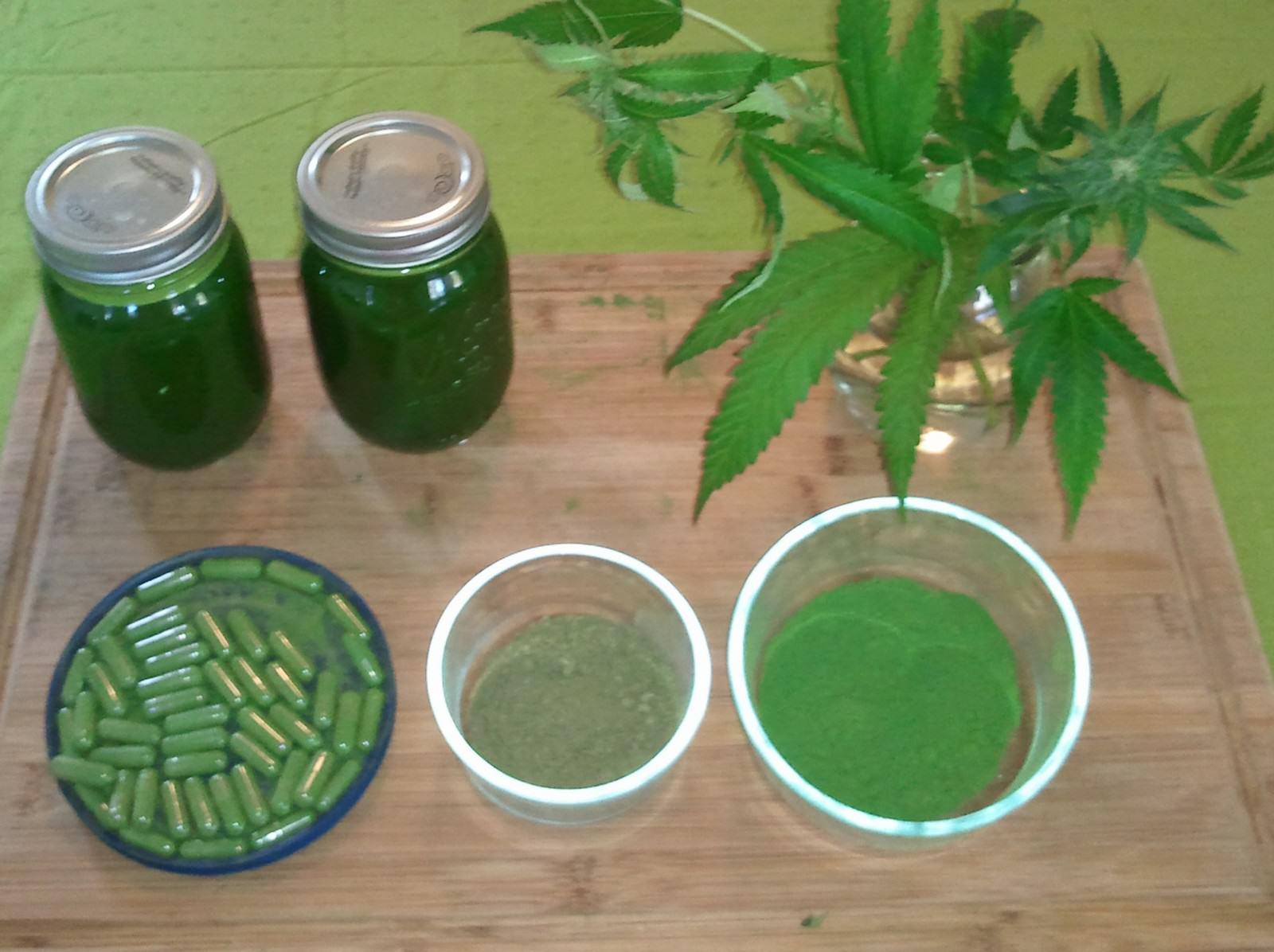 La marihuana es pot consumir de diverses formes, com ara càpsules, pols o suc de la planta.