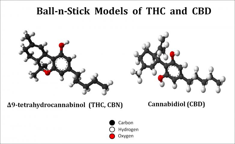 Cannabinoides CBD i THC