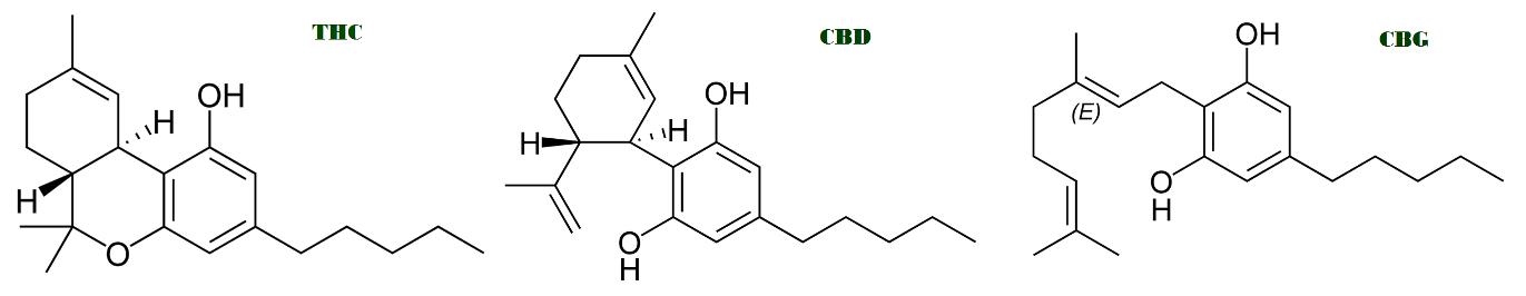 Fitocannabinoides