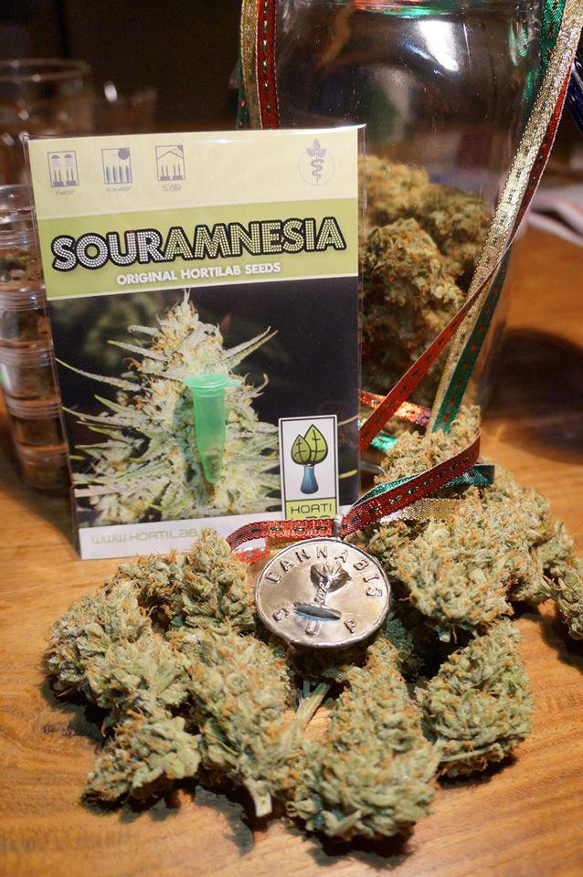 Sour Amnèsia, una varietat HortiLab testada i aprovada pel nostre equip