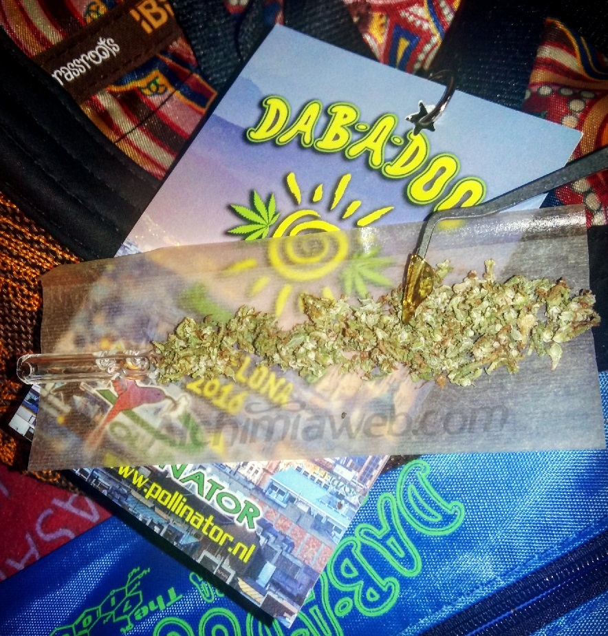 Dabado - Flame Of - Summer Gathering 2016