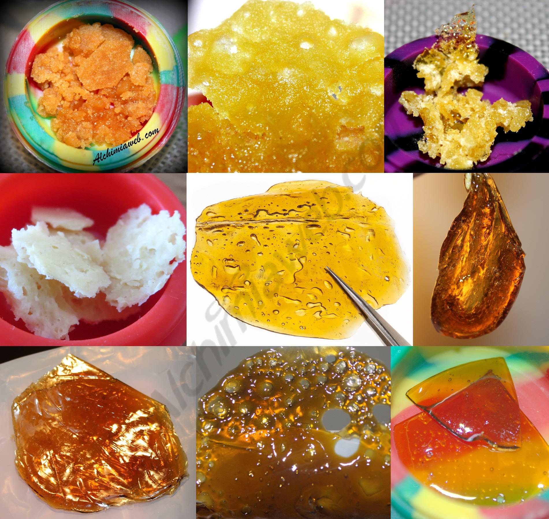 Diferents textures i colors d'oli de marihuana BHO