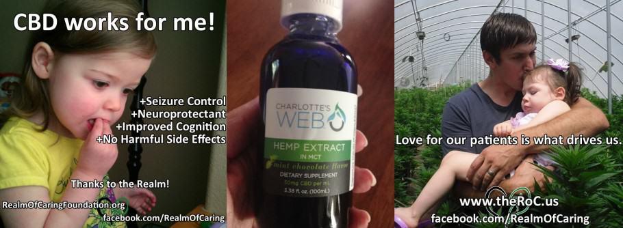 L'oli de la varietat de marihuana Charlotte s Web es va utilitzar per curar a varis nens