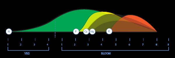 Quins nutrients requereixen les plantes durant la seva vida?