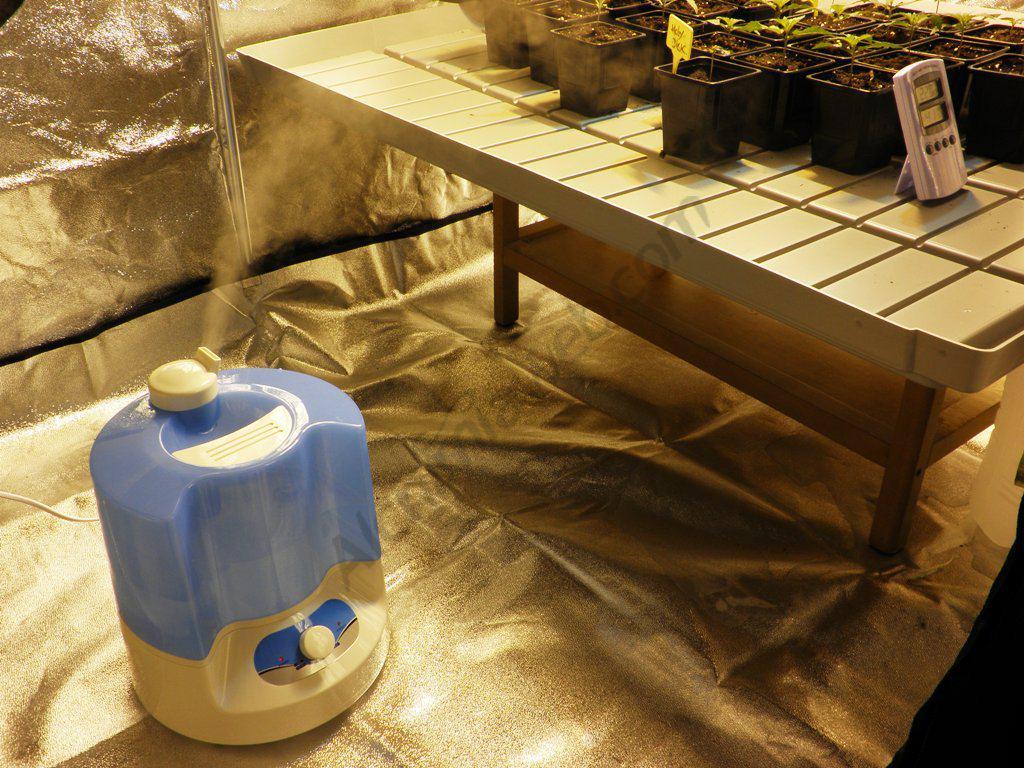 Humidificador per al control de la humitat en creixement