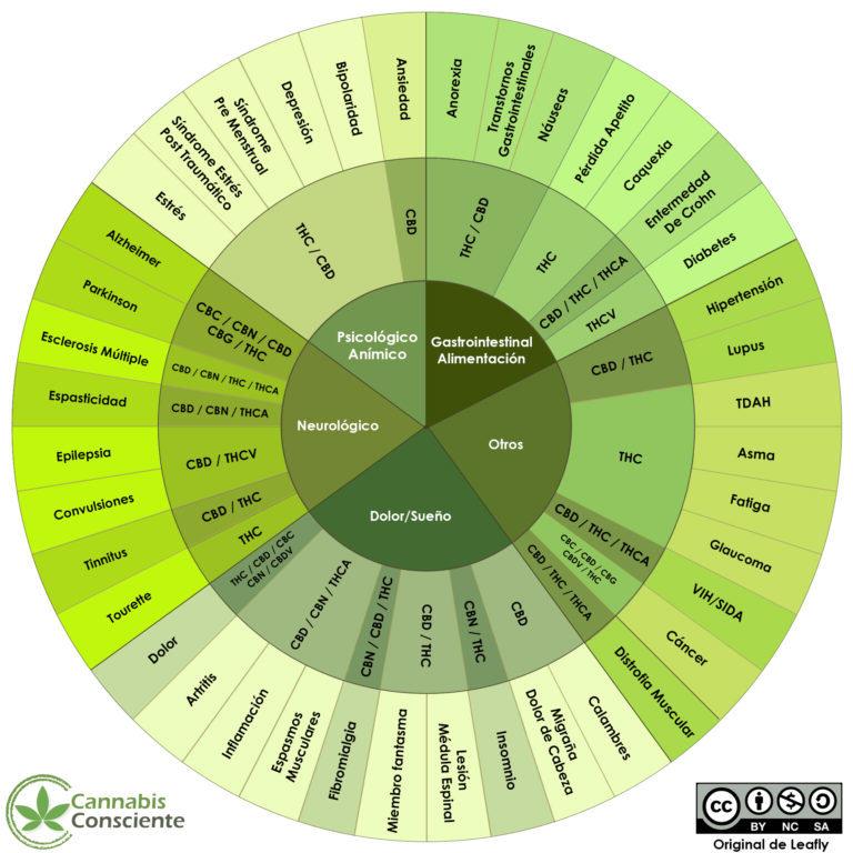Cannabinoides i les seves aplicacions terapèutiques (Font: Cannabisconsciente.com