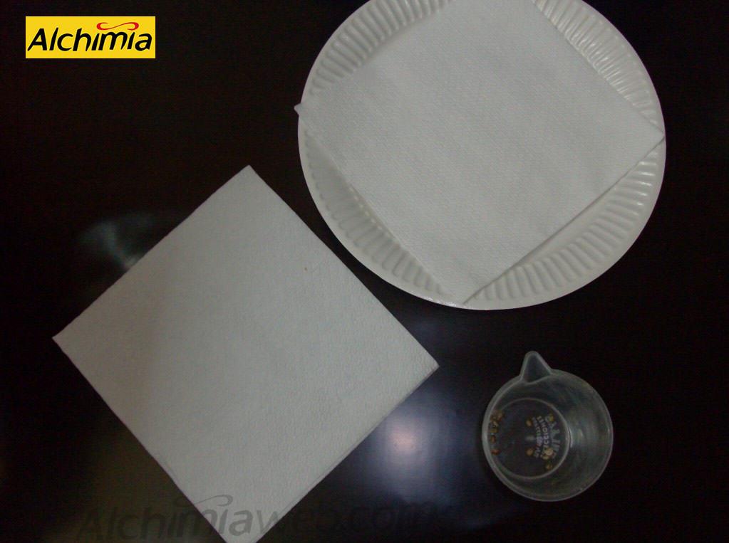 Prepara un plat o recipient pla i uns tovallons de paper